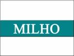 Milho: Depois dos ganhos recentes, mercado inicia pregão desta 6ª feira em queda na Bolsa de Chicago